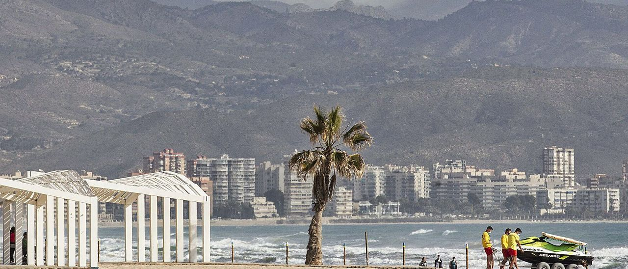 La playa de San Juan, en una imagen de ayer, con servicio de salvamento y postes que delimitan la zona de paseo.  | ALEX DOMÍNGUEZ