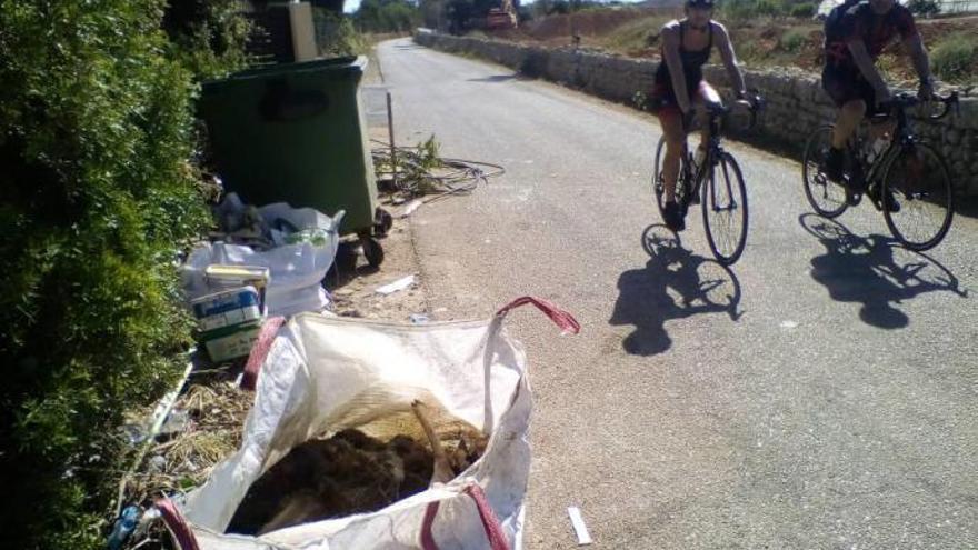 Polizei klärt Tod der im Müll entsorgten Damhirsche