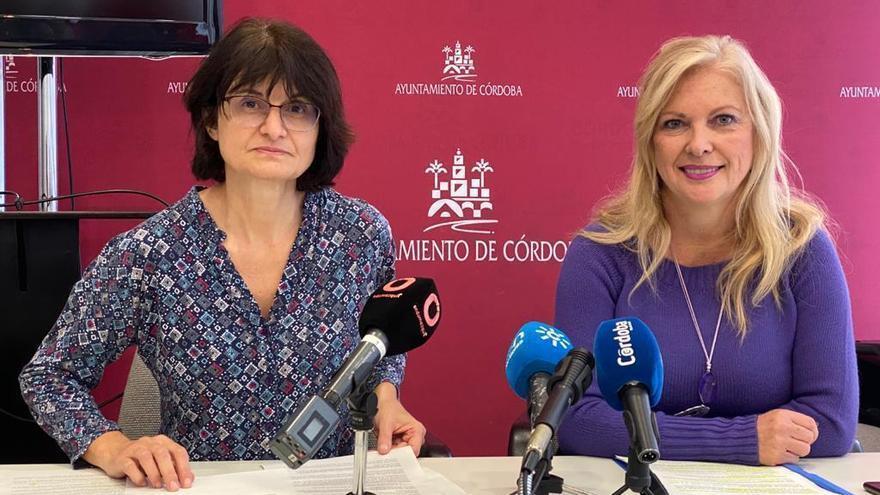 IU y Podemos pedirán en el pleno a la Junta de Andalucía que baje la ratio en la escuela pública
