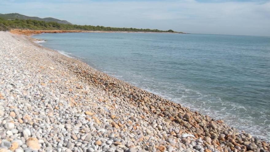 Bandera negra para seis  zonas costeras contaminadas y mal gestionadas