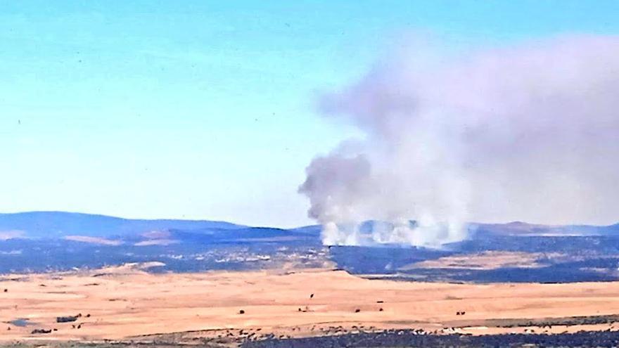 Controlado el incendio forestal en Madroñera