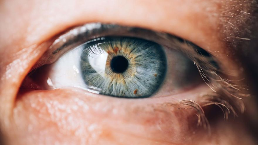 "Científicos ""resucitarán"" ojos de fallecidos para experimentar con ellos"