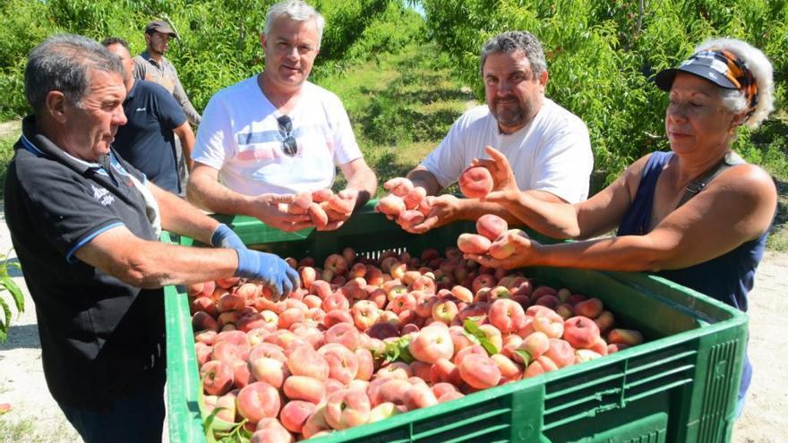 El sector agrario de la Región, ''abocado al abismo'' si sigue así