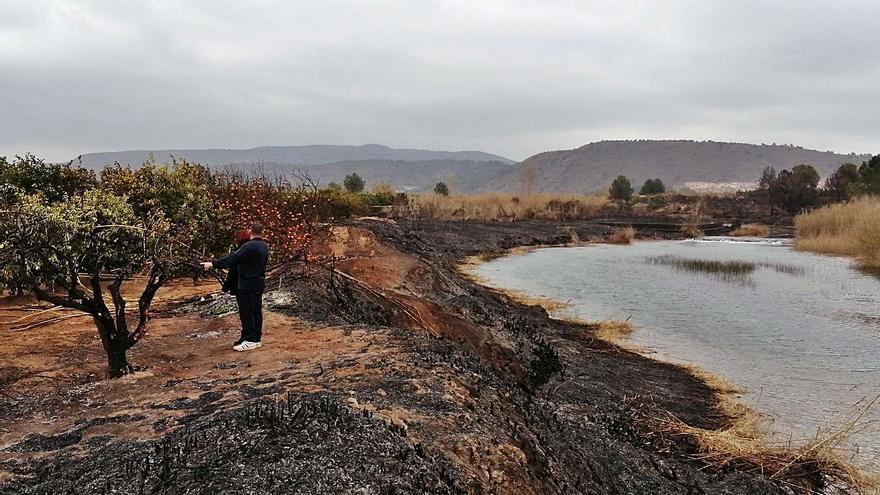 Cadena d'incendis provocats al Xúquer