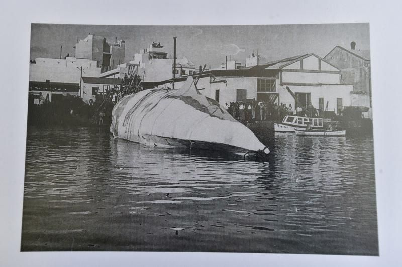 La ballena de Moby Dick en la Onda Atlántica