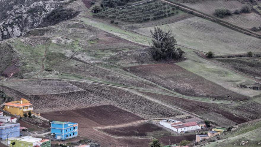 Veinte años de lucha por el robo de tierras