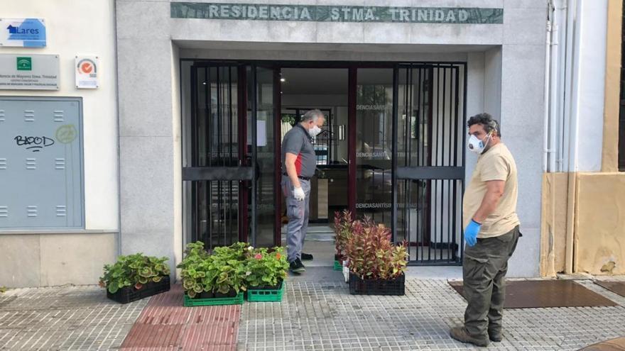 Coronavirus en Córdoba: el Jardín Botánico reparte plantas en residencias y sedes de colectivos sociales