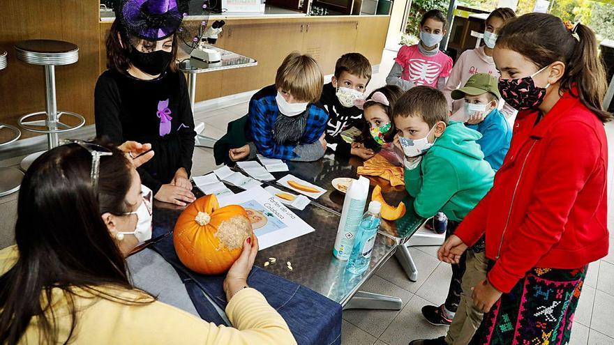 El Botánico da calabazas a Halloween