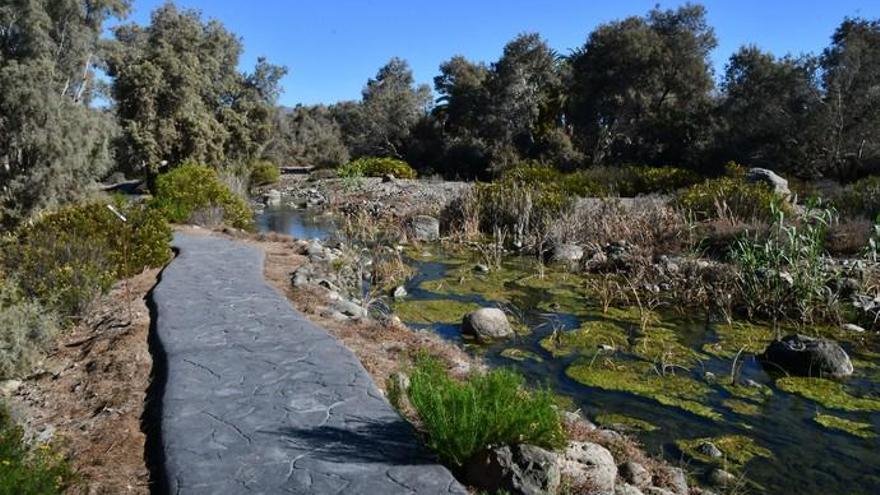El parque Tony Gallardo será un museo al aire libre con seis de sus obras
