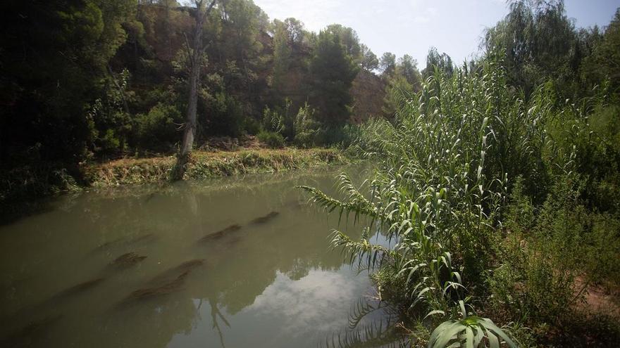 La ampliación del Parc del Túria mantiene el veto a Intu Mediterrani al proteger Les Moles