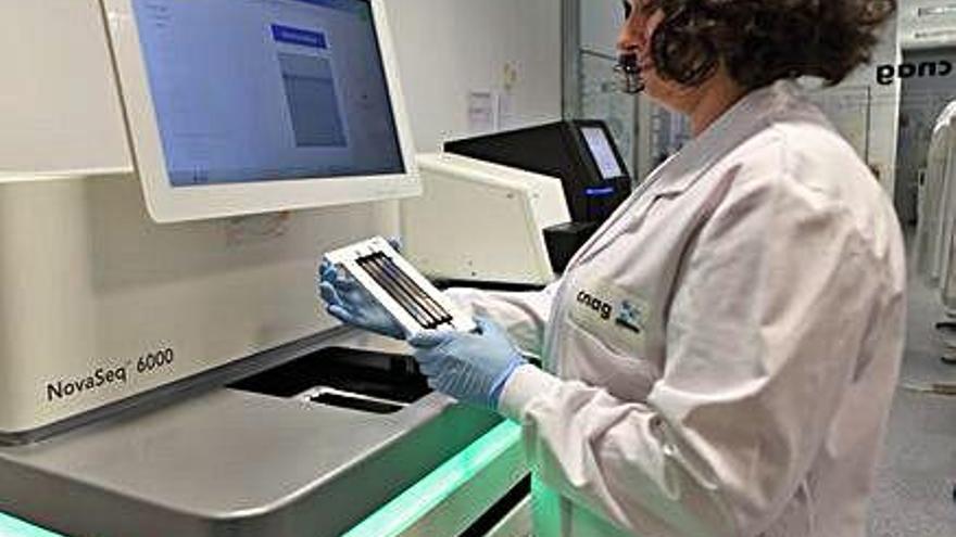 Identificada una mutació en el càncer que permetria predir-lo