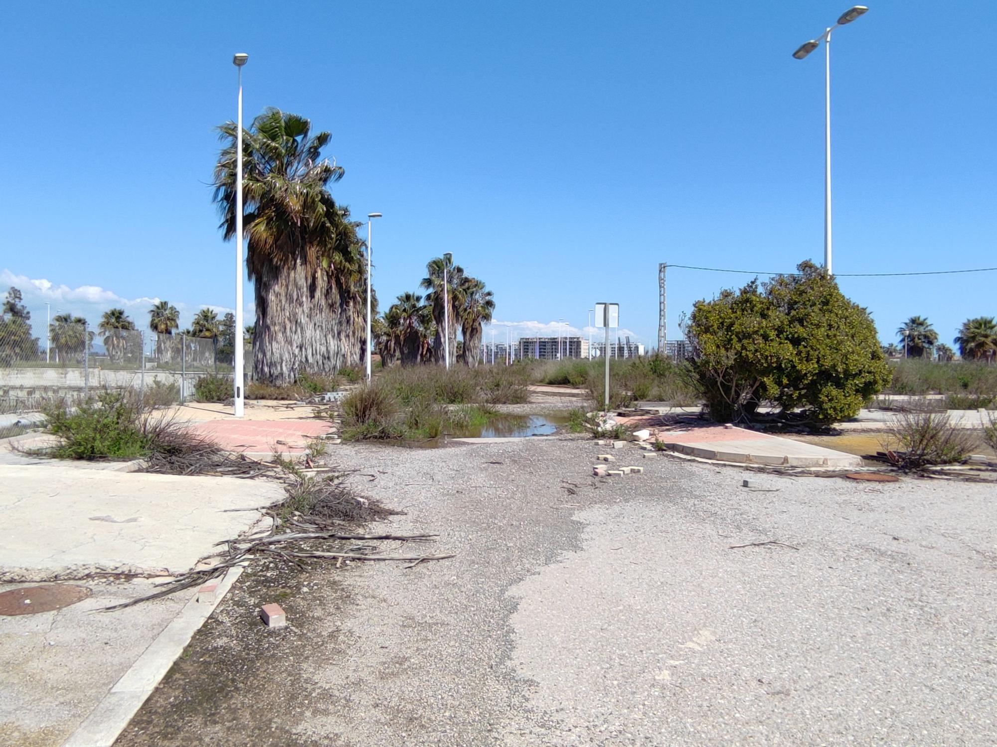 El PAI Belcaire Sur de Moncofa, una urbanización abandonada y habitada solo por la maleza