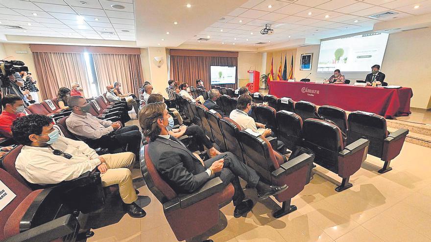 Las alianzas empresariales impulsan el hidrógeno verde en Castellón