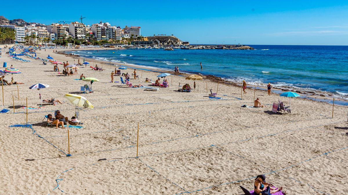 Parcelas para asegurar el distanciamiento social en la playa de Poniente, el pasado octubre.