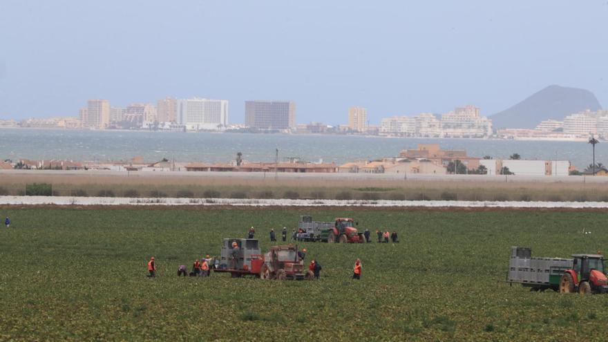 La CHS busca blindar el acuífero de Cartagena recortando el uso de fertilizantes