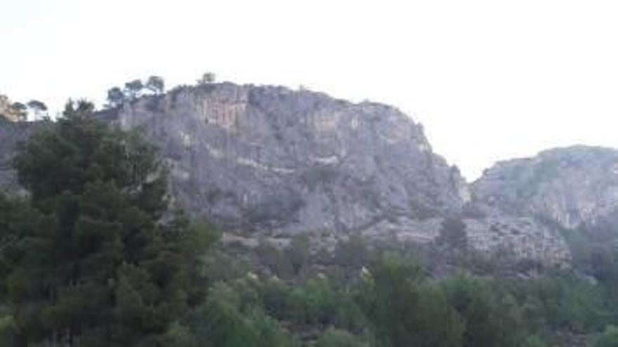 Gandia inicia en Molló, Cova Negra y Borrell las franjas de protección ante incendios forestales