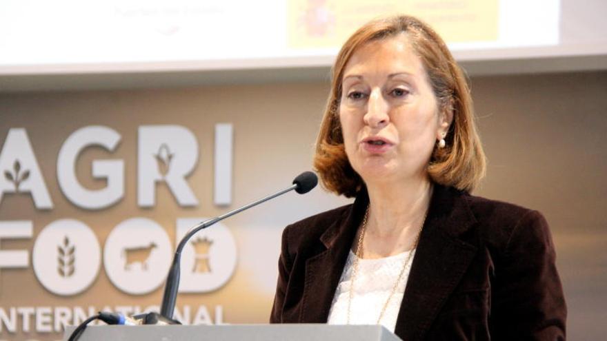 Dirigents del PP critiquen el possible pacte amb Vox a Andalusia