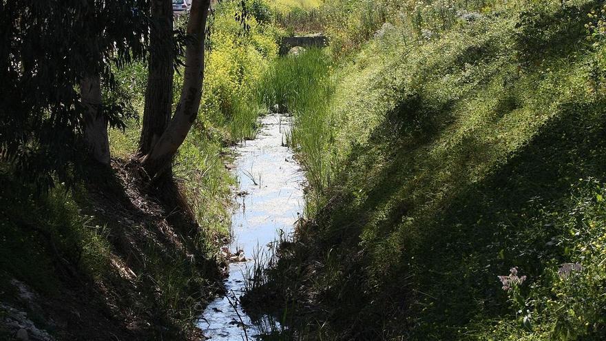 Contratan el encauzamiento del arroyo de la Rebanadilla en Campanillas