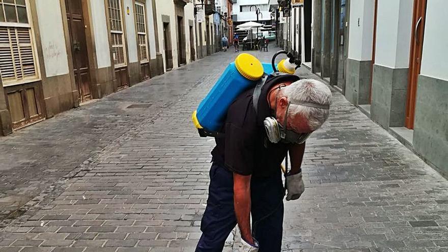 Más de una decena de barrios reciben nuevo tratamiento contra las plagas