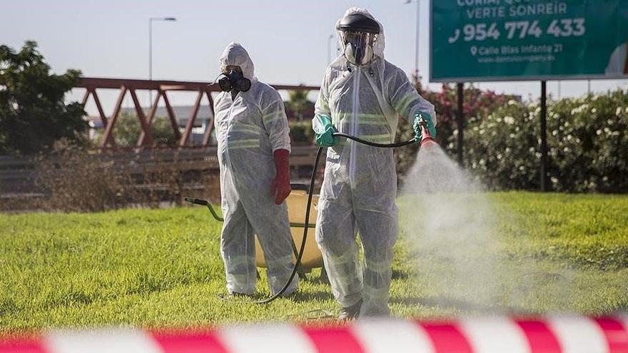 El brote del virus del Nilo en España terminará con el frío