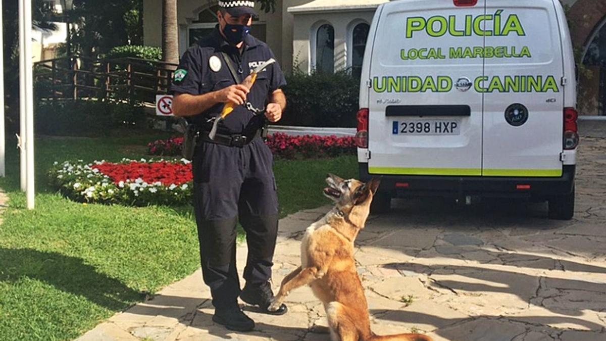 El agente de la Unidad Canina José Antonio González, junto a uno de los canes del equipo.   L. O.