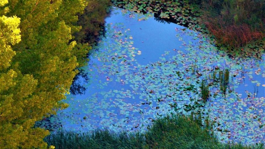 La ruta del agua de Chelva: un contraste entre historia y naturaleza