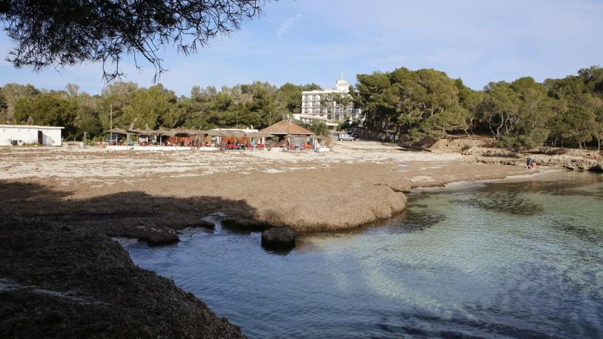 Cala Mondragó - wo ist der Traumstrand?