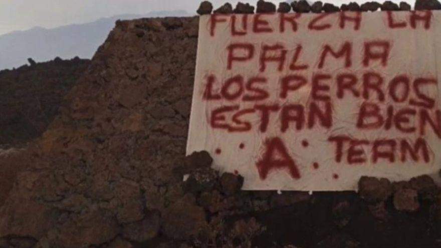 """Pérez Reverte: """"Mis respetos"""" a los que salvaron a los perros del volcán de La Palma"""