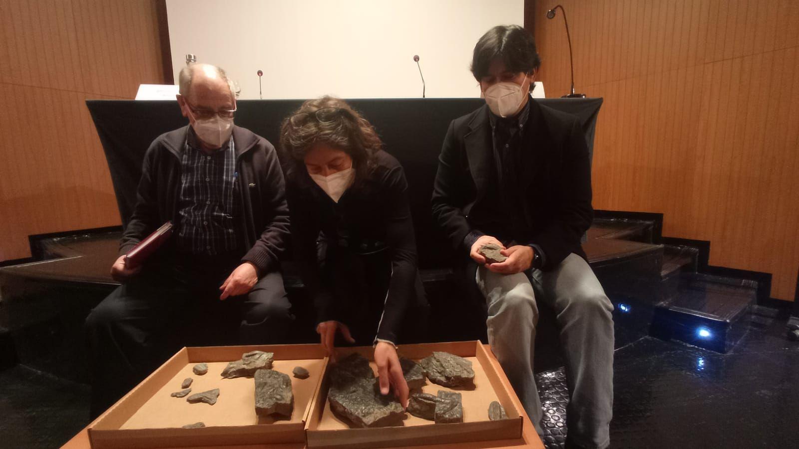El nuevo hallazgo fósil del Museo del Jurásico de Colunga