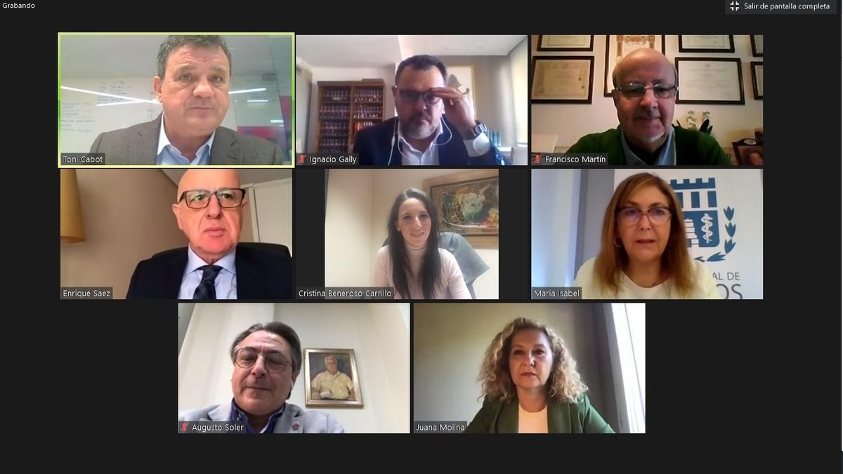 Un instante del webinar celebrado el pasado jueves con los colegios profesionales de la provincia de Alicante.