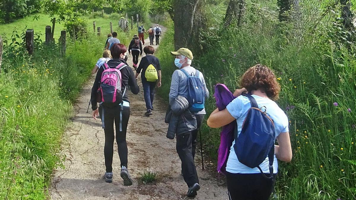 Los usuarios de los centros sociales se echan a los montes locales con 14 rutas | LNE