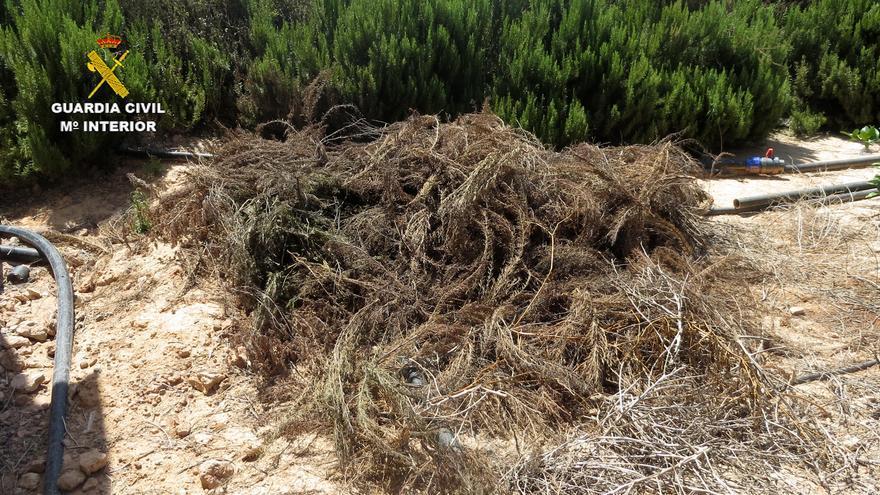 Investigan a un agricultor de San Javier por extracción de aguas subterráneas
