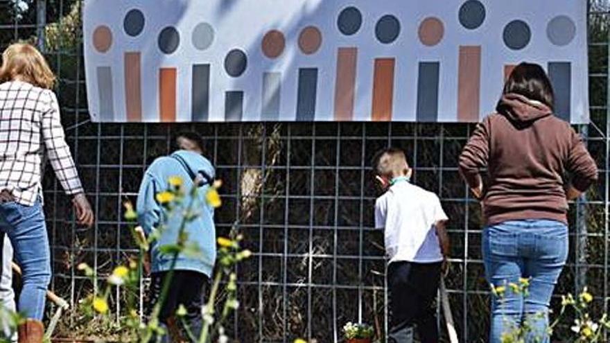 Los vecinos de Joven Futura siembran plantas para ayudar a la polinización