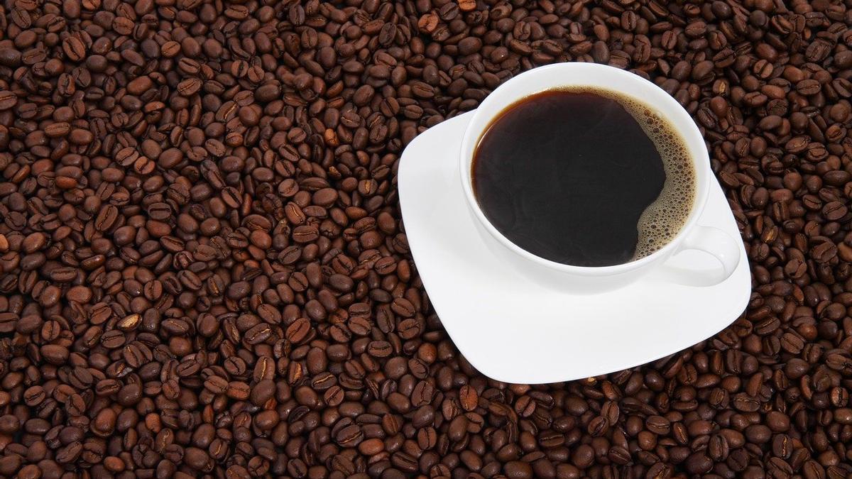 """El vídeo viral del doctor Karan Rajan en TikTok: """"El café tiene restos de cucarachas"""""""