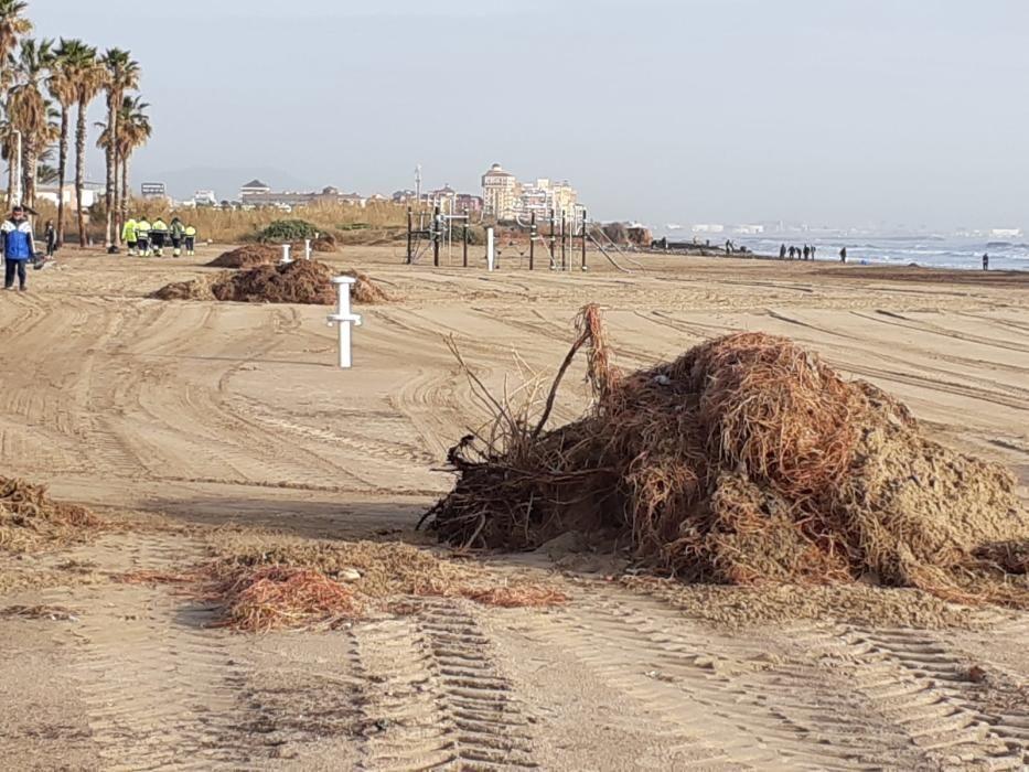 Suciedad amontonada en la playa de la Patacona.