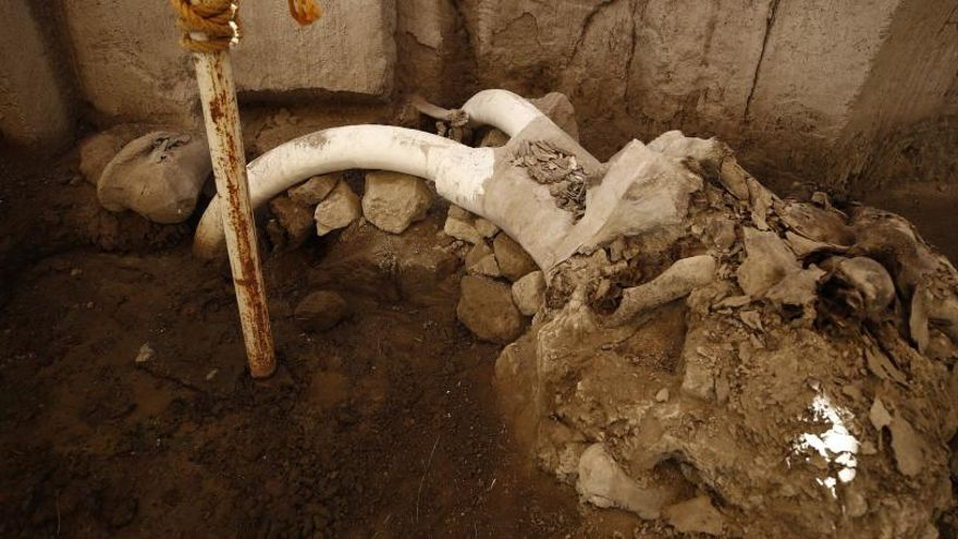 Hallan en México la primera trampa artificial del mundo para cazar mamuts