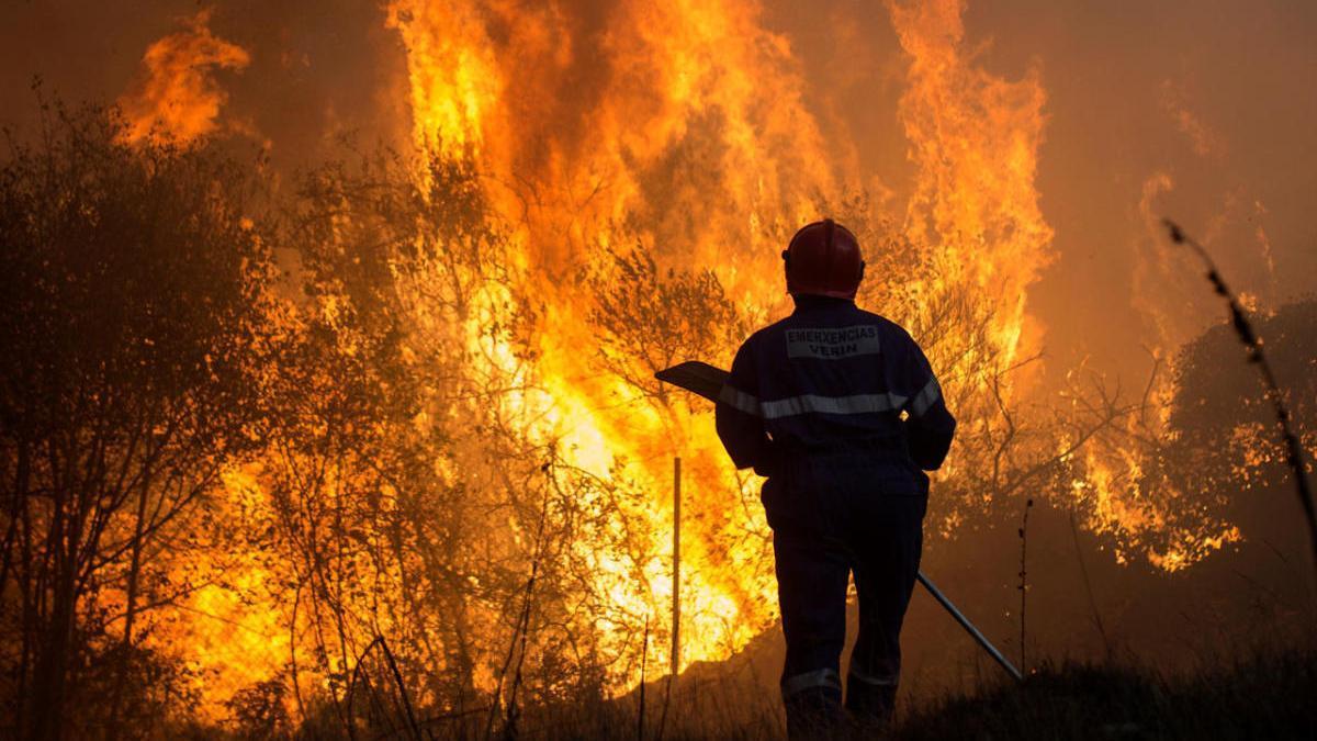 Uno de los últimos incendios registrados en Ourense. // Brais Lorenzo