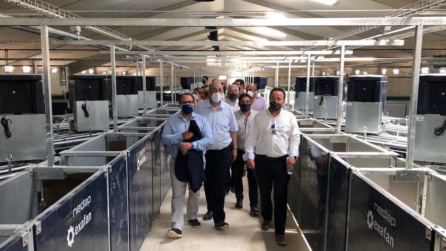 El grupo Costa instala en Samper de Calanda una granja pionera en Europa