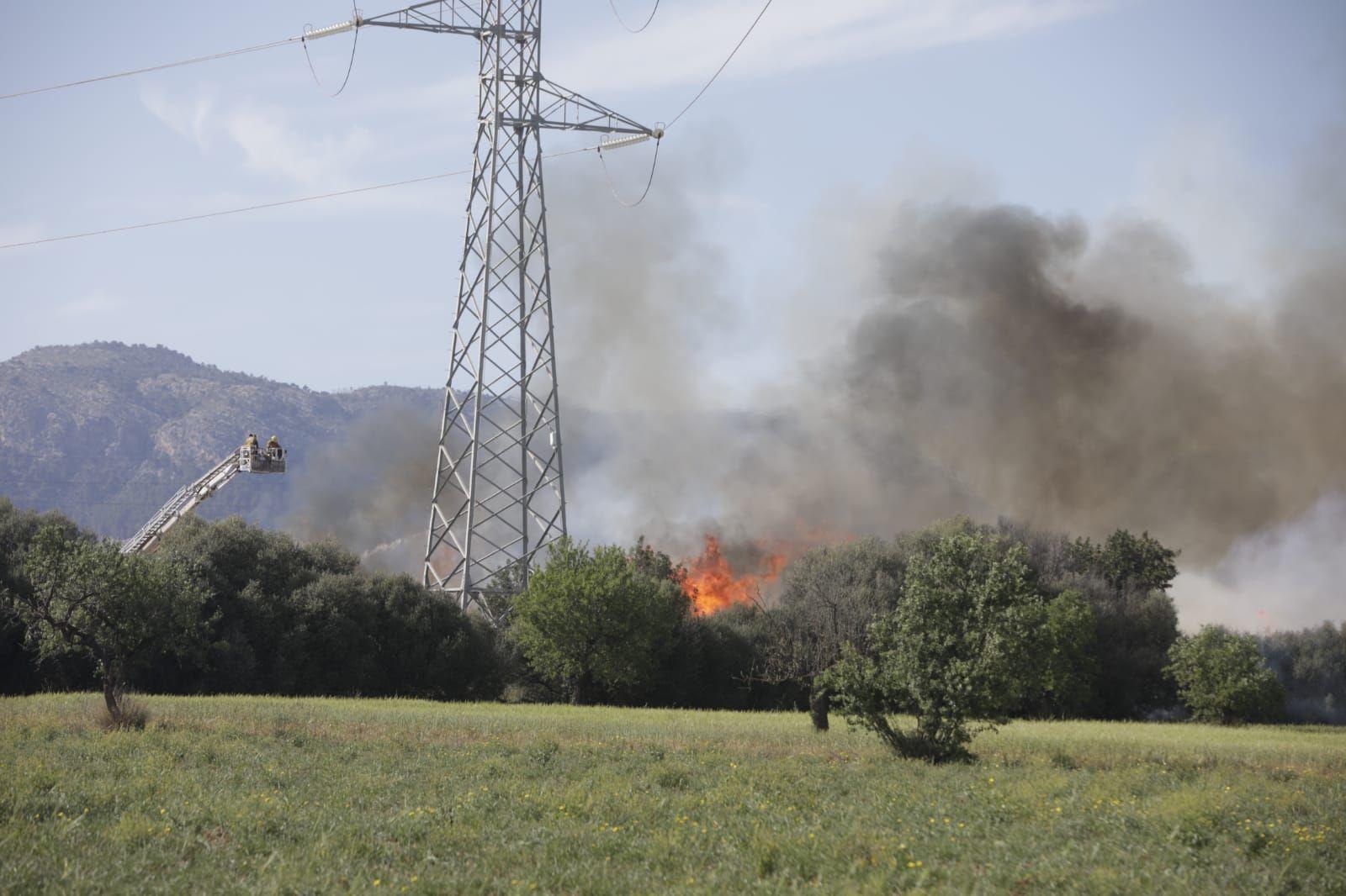 Alarma por un incendio junto a la incineradora de Son Reus