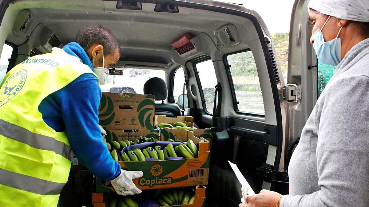 Imagen de archivo del reparto a los bancos de alimentos de una parte de la producción de Plátanos de Canarias.     F. G. GUERRERO /EFE