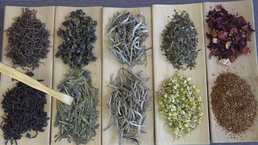 ¿Qué es el té? - Diferencias entre los diferentes tipos de té y otras infusiones