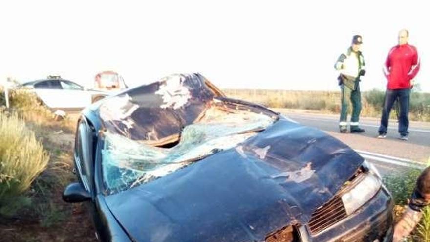 Dos personas heridas al colisionar su vehículo con una mula en Bermillo