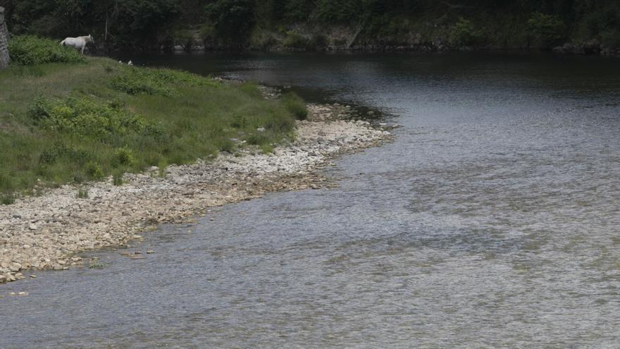El proyecto para proteger Arriondas de las riadas echará a andar a finales de 2021