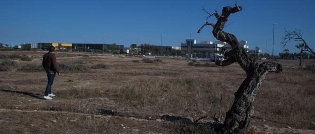 La ampliación del parque industrial aparca las ATEs para agilizar la expansión de Tempe