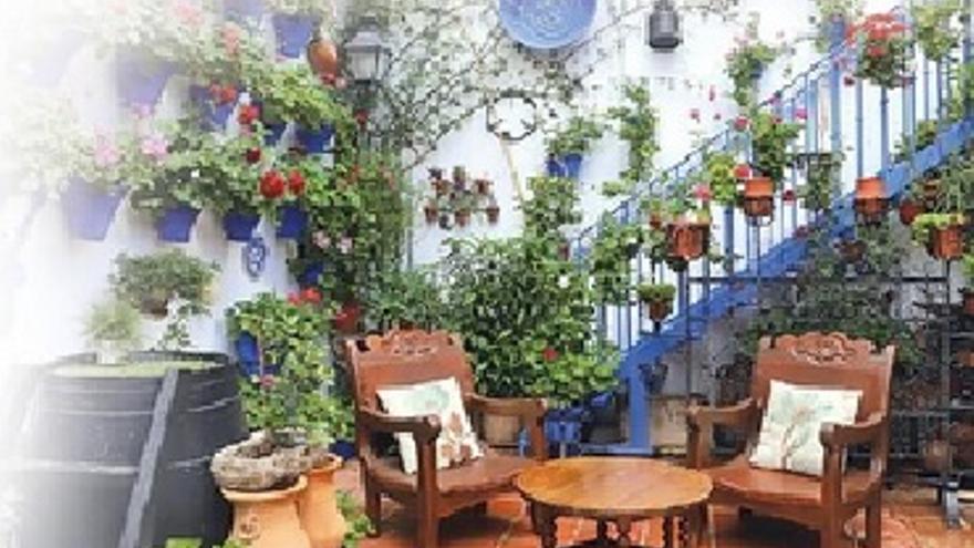 Patrimonio Humano de los patios. Fotografías en la calle