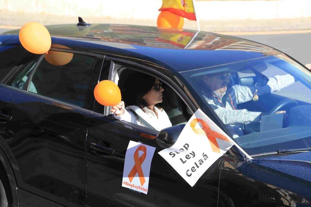 Protesta en Cartagena contra la Ley Celaá