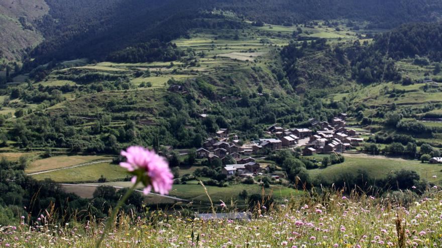 Catalunya, Andorra i França creen la primera xarxa transfronterera de laboratoris botànics a cel obert a Europa