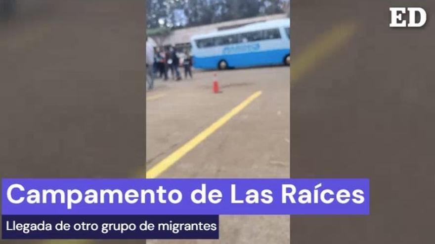 Llegada de un nuevo grupo de migrantes al campamento de Las Raíces