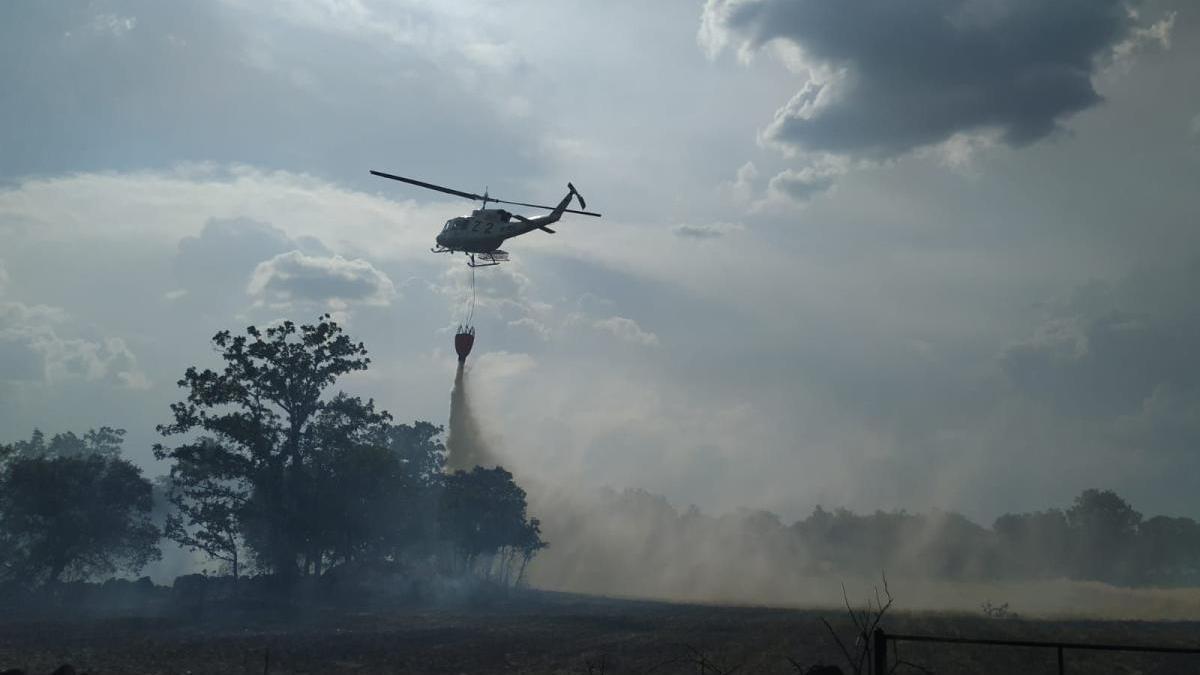 Un incendio en la provincia de Zamora durante la temporada pasada.