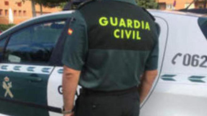 'Operación Timador': tres detenidos por estafar en Gran Canaria a empresas agrícolas
